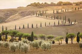 tuscan2